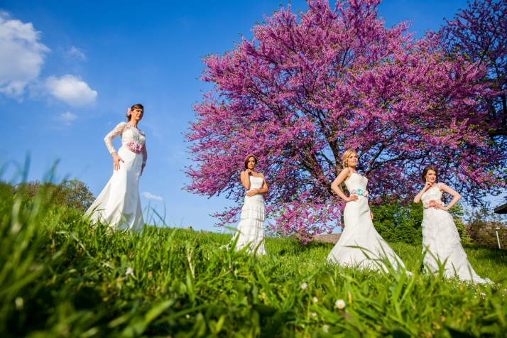 Beautiful four young brides together outdoors in a park